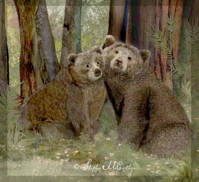 bear couple by Stephie McCarthy